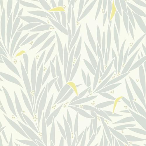 Lauren Wallpaper